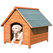 Boudy pro psy