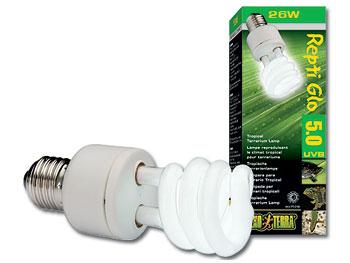 Žárovky a lampy
