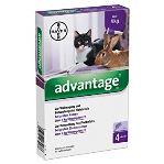 Advantage 80 10% 4x0,8ml pro kočky a králíky nad 4kg