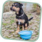 Miska pro psa, cestovní, BecoBowl Travel-blue S, EKO