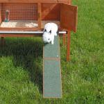 Dřevěná rampa k rampám, domečkům a králíkárnám 20x50cm, Trixie