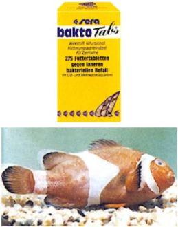 Sera bakto-tabs 100ml/275tab/68g