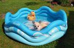 Alcott nafukovací bazén pro psy modrý
