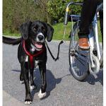 Vodící set na kolo Dog Biker de Luxe Trixie
