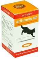 Arthronis Acute Mini 60 tablet
