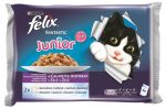 Felix cat kapsička Fantastic Multipack Junior kuře/losos v želé 4x100g