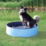 Bazén pro psy 160x30cm světle modrá/modrá