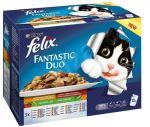 Felix Fantastic DUO lahodný výběr se zeleninou v želé 12x100g