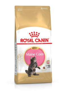 Royal Canin Maine Coon KITTEN 10kg