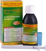 Hyalchondro DC plus 1x120ml