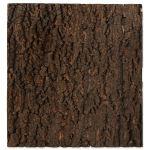 Pozadí REPTI PLANET korek přírodní 43,5x41cm