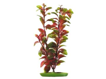 Rostlina LIVING WORLD Red Ludwigia 30cm