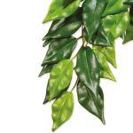 Rostlina EXO TERRA Ficus střední 55cm
