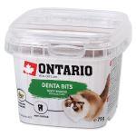 ONTARIO pochoutka Dental Bits 75g