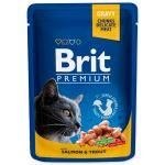 Kapsička BRIT Premium cat salmon & trout 100g