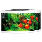 Akvárium set JUWEL Trigon LED 350 bílé 350l